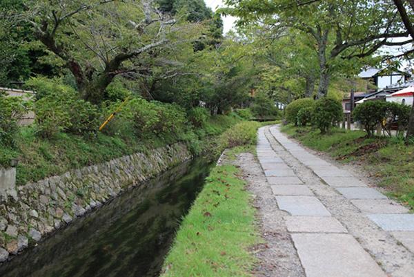 The Philosopher's Path (Tetsugaku no michi)